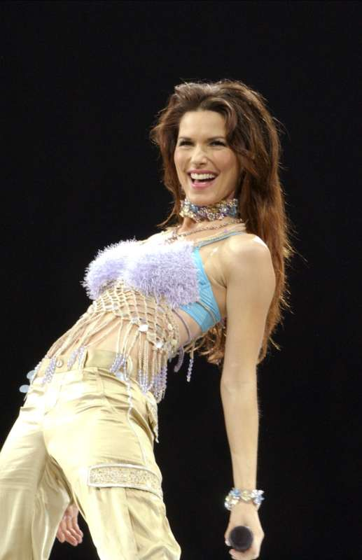 shania twain bathing suit